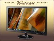 24 Zoll Asus Bildschirm