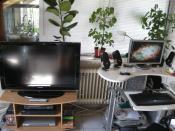 Mein TV mit Rechner