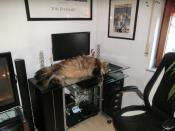 Mein PC Administrator