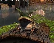G80 Froggy Demo (Ochsenfrosch)
