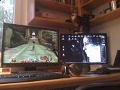 Mein Schreibtisch + Katze ;)