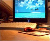 Mein Monitor: Bild 2