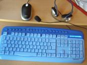 die Eingeabegeräte (Headset, USB-Maus und Tastatur (PS/2)
