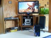 Der PC am Fernseher angeschloßen