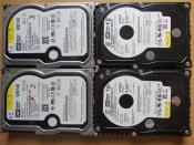 4x WD Raptor 74 GB @ 10.000 U/min
