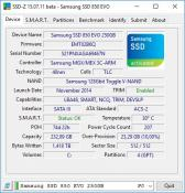 SSD bei SSD-Z